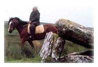 tourisme guide circuit voyage equestre