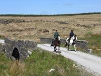 iralnde nature cheval promenade voyage vacances