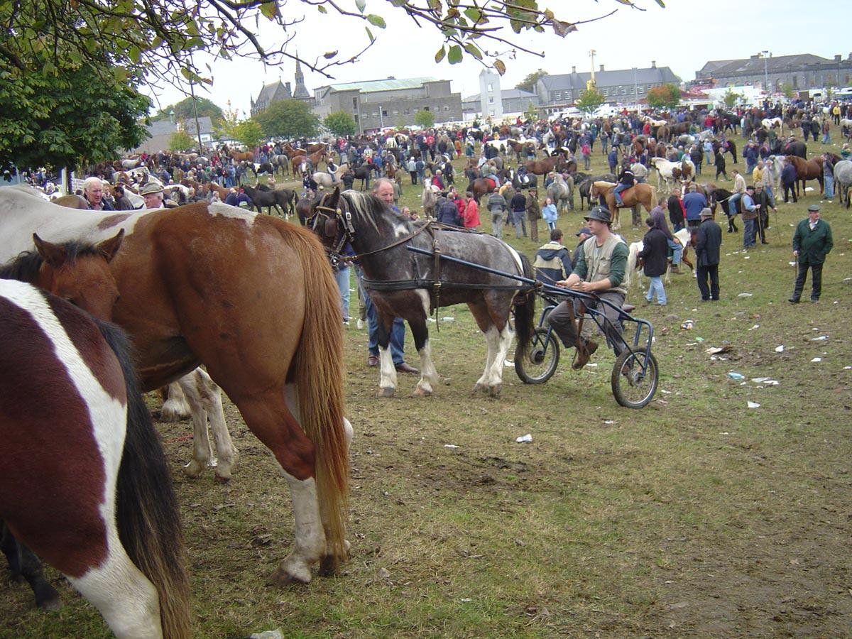 Ballinasloe-horse-fair-01
