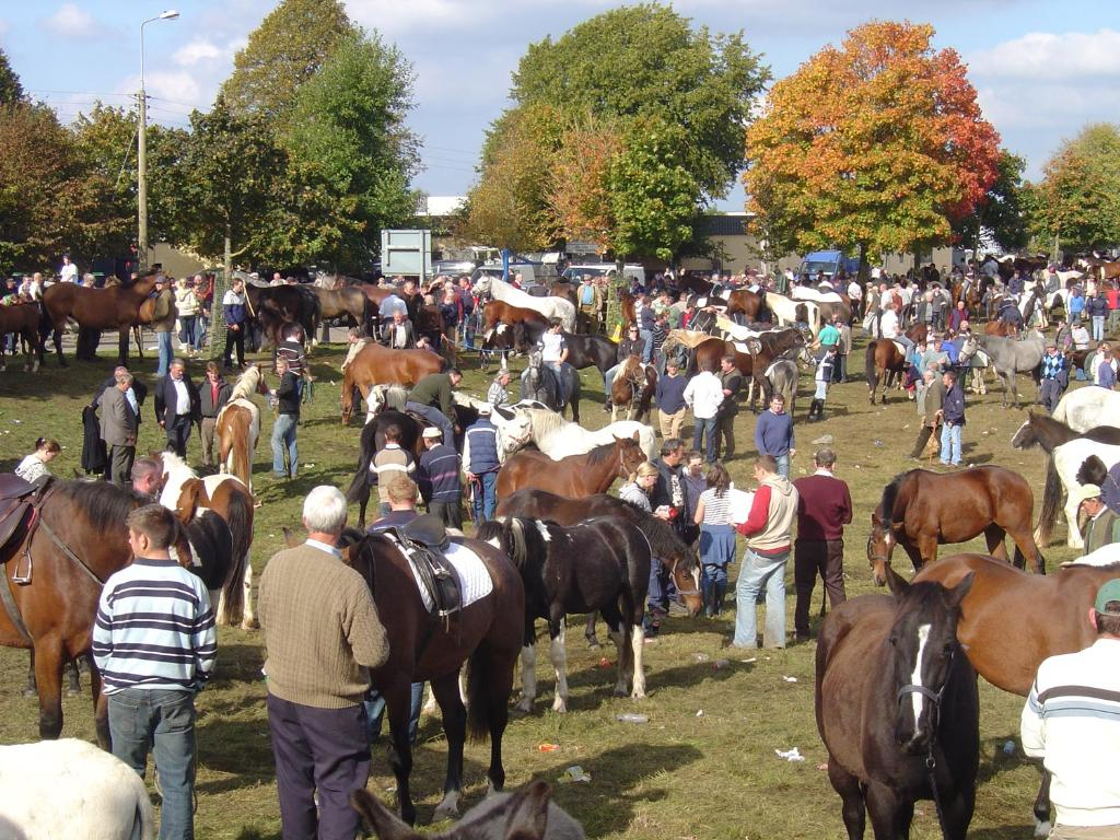 Ballinasloe-horse-fair-04
